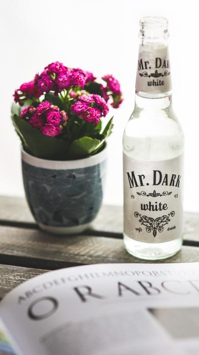 静物摆拍 鲜花盆栽 白酒 Mr.Dark