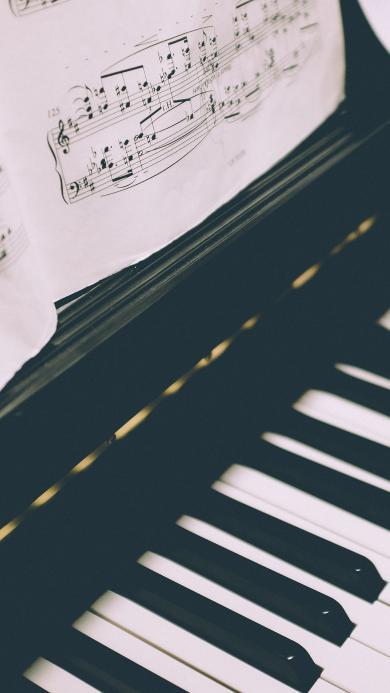 弹钢琴 琴谱 黑白琴键 乐器