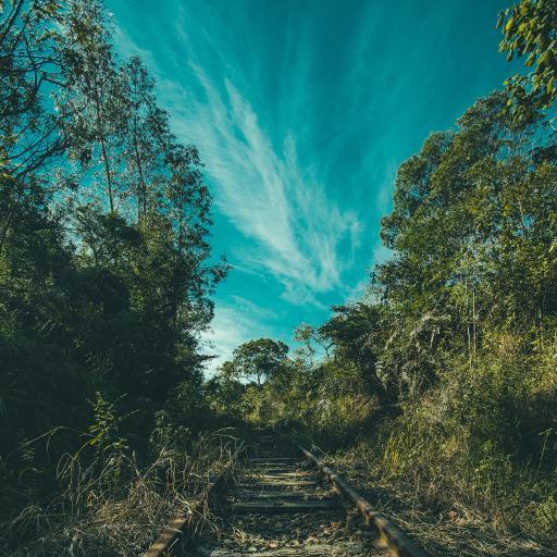 蓝天白云 火车轨道 绿植 唯美风景
