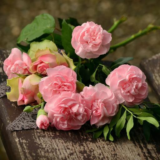 木板 粉色鲜花 花束