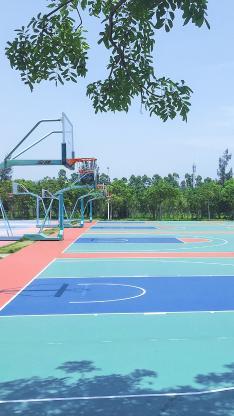 夏日 篮球场 体育 运动