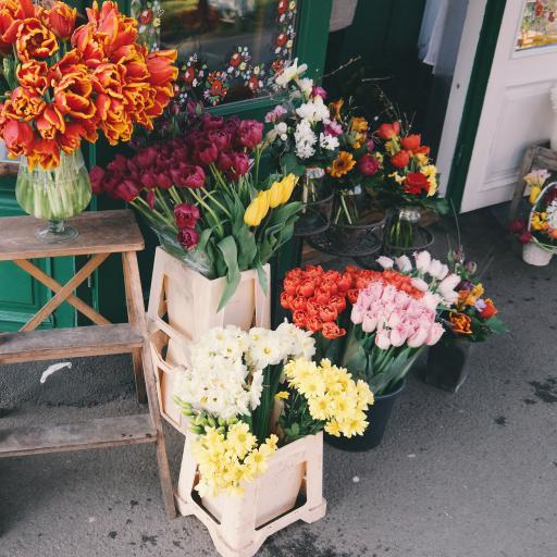 鲜花 花卉 花艺 花店 浪漫