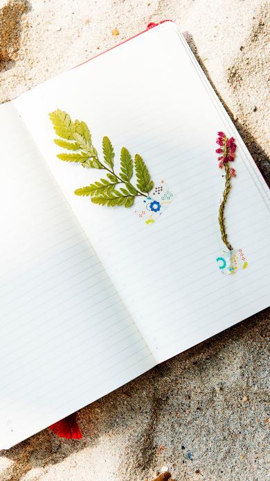 创意 标本 植物 绿叶 笔记本
