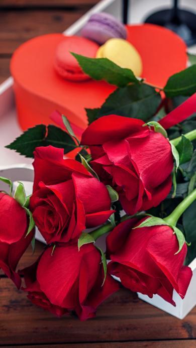 玫瑰 小花 植物 情感 鲜红