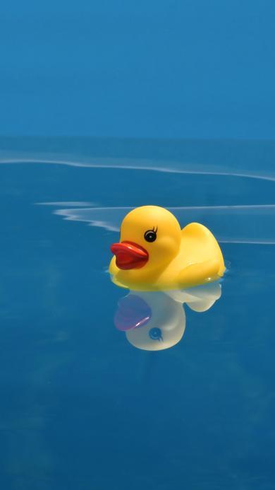 小黄鸭 橡胶 玩具 蓝色 可爱