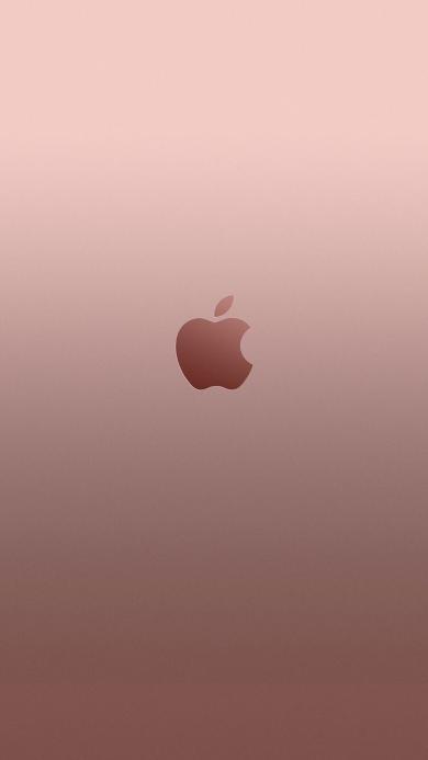 玫瑰金背景 苹果logo 简约