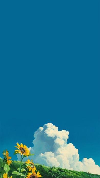 向日葵 蓝天 白云 草地