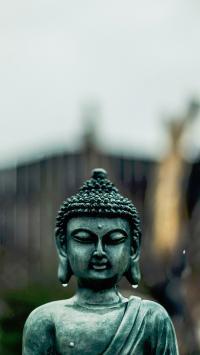 佛像 信仰 雨 雕塑 雨水 文化