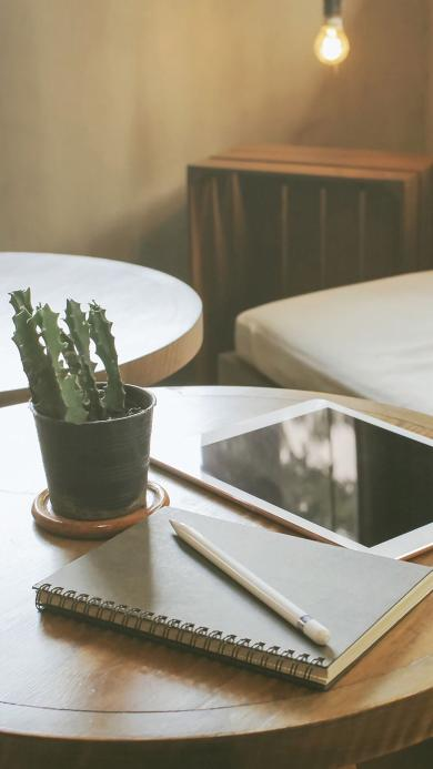 台桌 盆栽 仙人掌 笔记本 静物
