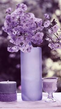 鲜花 蜡烛 静物 紫