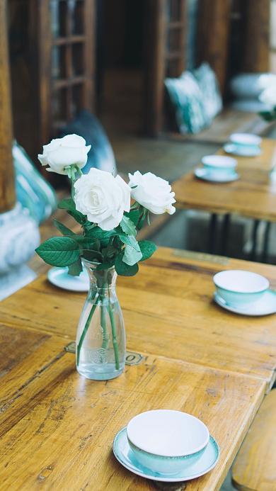 白玫瑰 鲜花 插花 玻璃瓶 花艺 浪漫 唯美