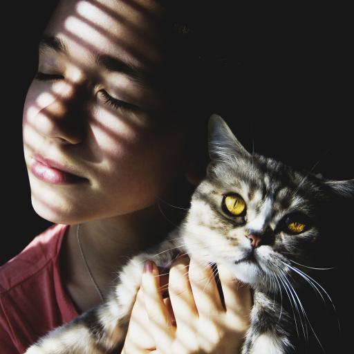 欧美美女 宠物猫咪 可爱