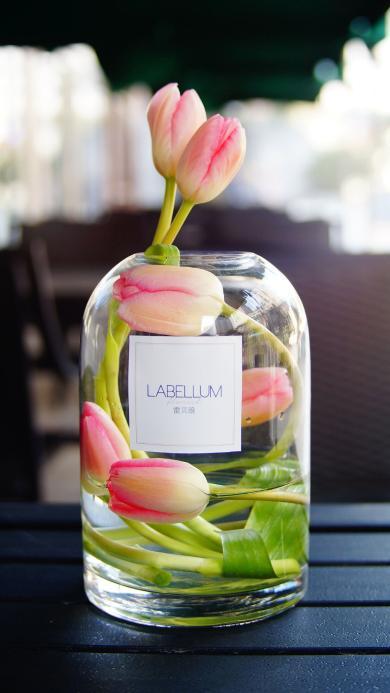 花瓶 鲜花 郁金香 唯美
