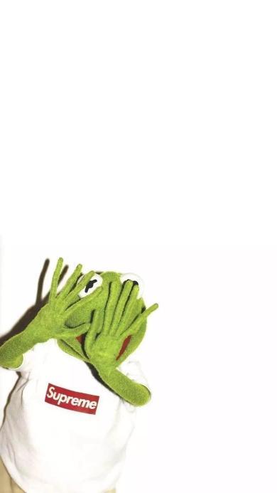 白色背景 科米蛙 supreme