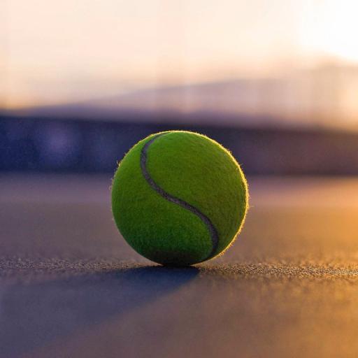 网球 体育 阳光 写真