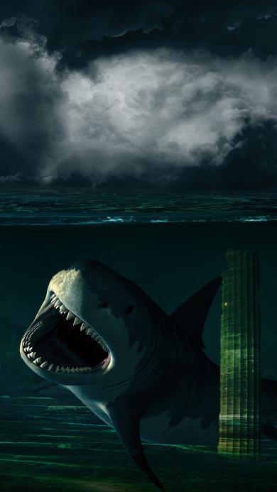海底世界 鲨鱼 凶猛