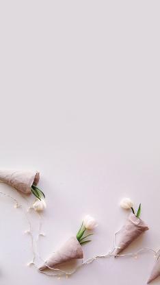 鲜花 郁金香 植物 创意