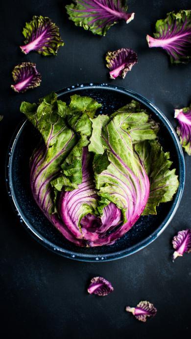 包菜 蔬菜 菜叶 食物