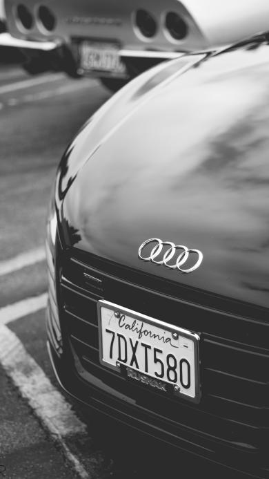 奥迪 名车 跑车 黑色