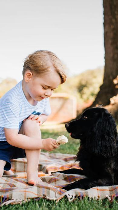 欧美金发小萌娃 宠物狗 喂雪糕