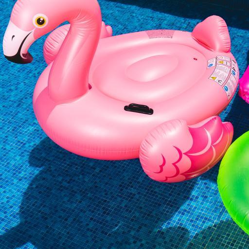 泳池 火烈鸟泳圈 粉色