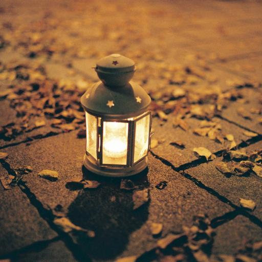 灯座 灯光 光亮 落叶