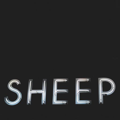 sheep 羊 胆小鬼 黑白 灯光 英文