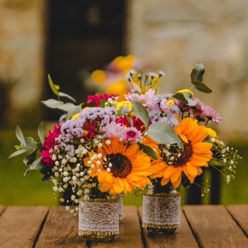花束 色彩 鲜花 盛开