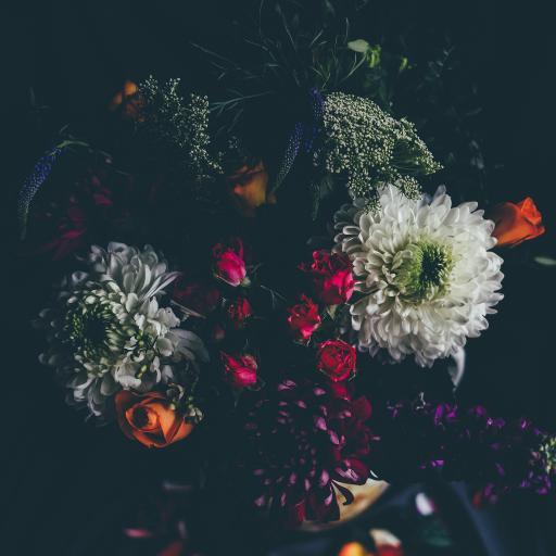 花束 鲜花 品种 丰富 色彩