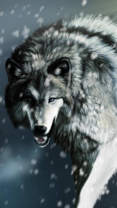 狼 凶猛 猛兽 野兽 雪