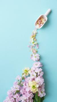 鲜花 创意 花瓣 倾倒