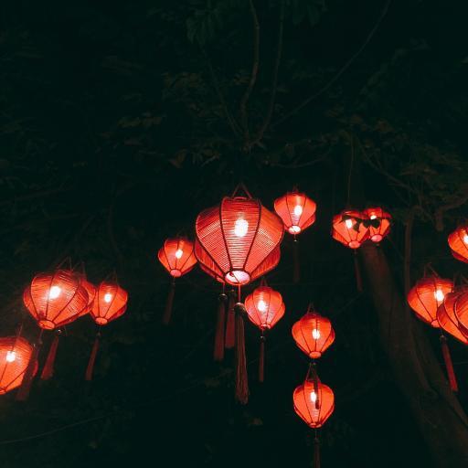 灯笼 红红火火 喜庆