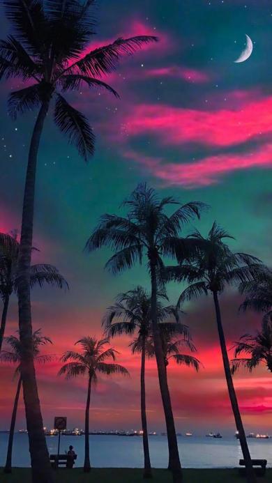 晚霞 椰树 月亮 云彩