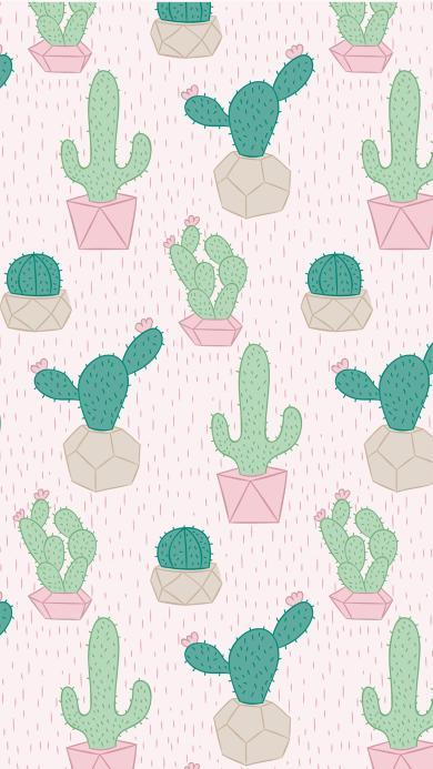仙人掌 植物 平铺 创意