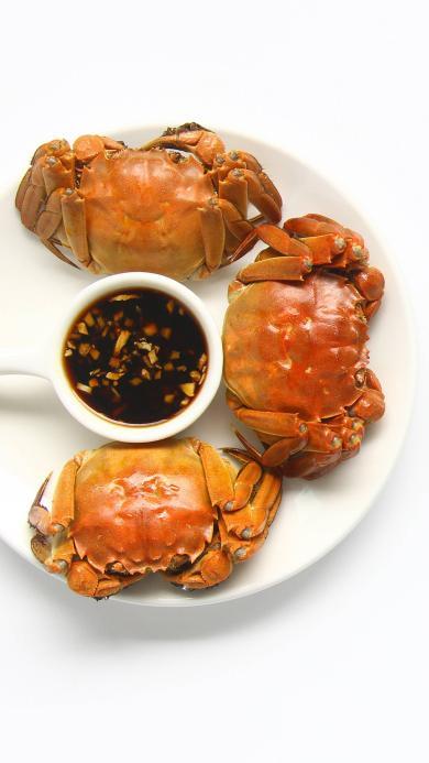 大闸蟹 食物 螃蟹 酱料
