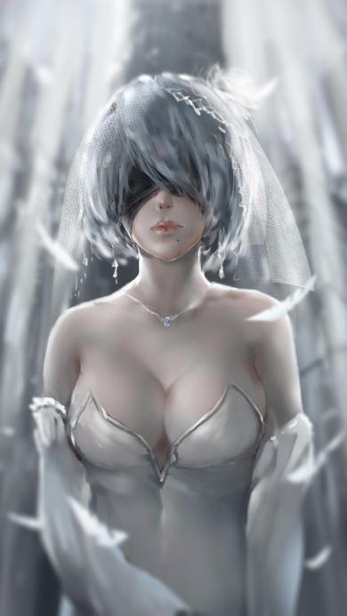 2B 机械次元 任天堂 PS4