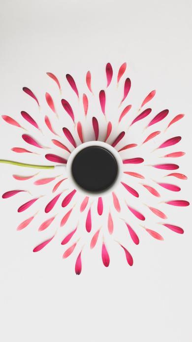 花瓣 咖啡 鲜花 饮品