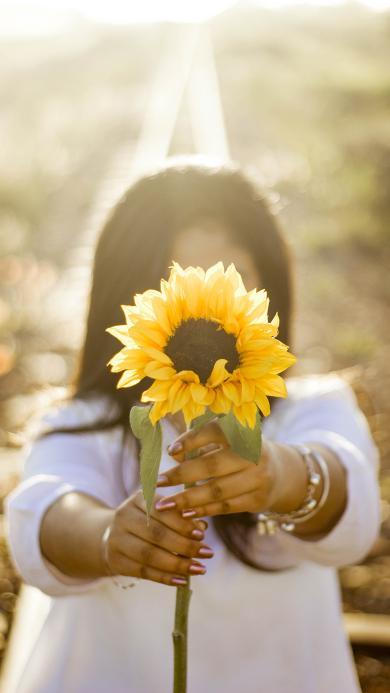 向日葵 鲜花 女孩 枝叶 阳光