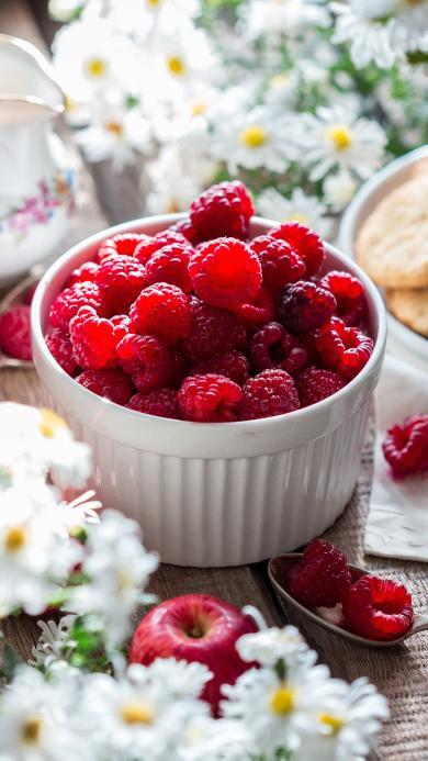 蔓越莓 水果 雏菊 新鲜