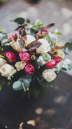 花束 白色玫瑰 红色玫瑰 小清新
