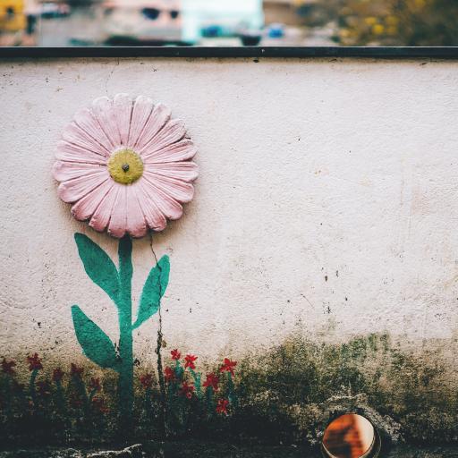 废旧 涂鸦 创意 街头 菊花