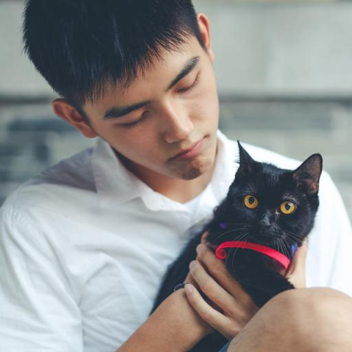 陈飞宇 演员 明星 艺人 黑猫
