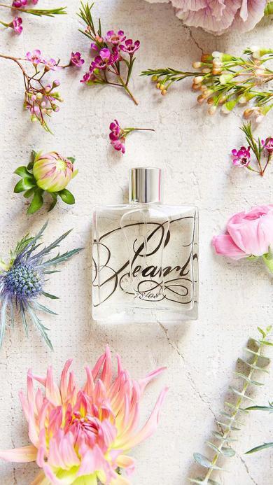 香水 鲜花 雏菊 花苞 香味