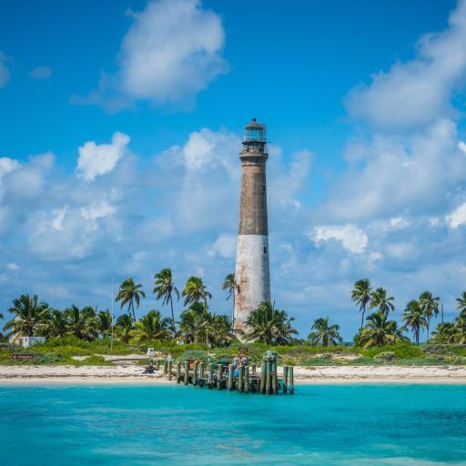 海边美景 椰树 信号塔 蓝蓝海水