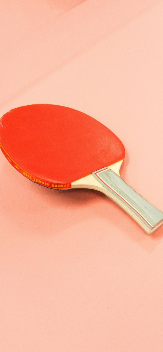 乒乓球 球拍 红色 运动场 国球