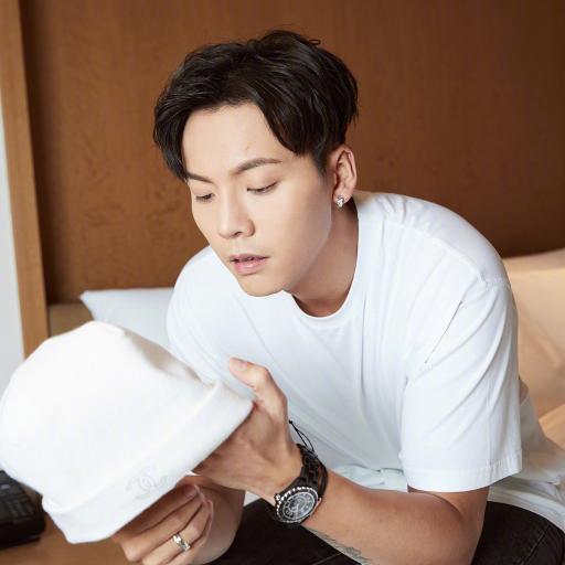 陈伟霆 香港 歌手 演员 明星 艺人
