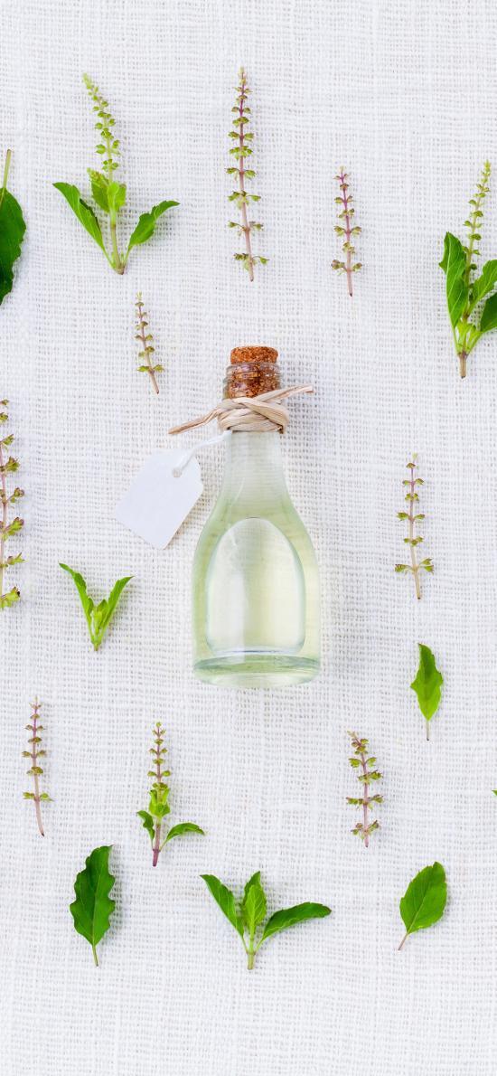 简约 绿叶 瓶子 装饰品
