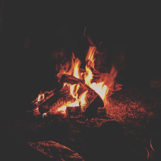 篝火 夜晚 柴火 火焰