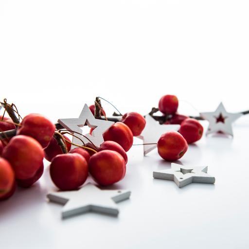 圣诞树装饰 星星 红果子 灯泡 Christmas