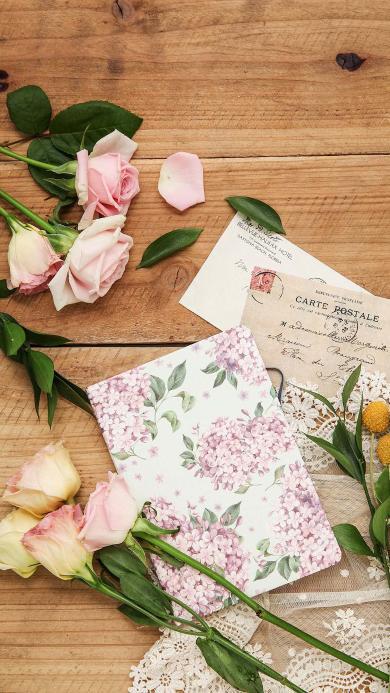 玫瑰 鲜花 花瓣 信件